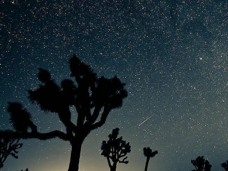 Les 12 et 13 août : la pluie de météores des Perséides