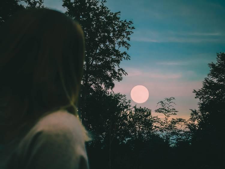"""Le 30 novembre : la pleine lune dite """"du Castor"""""""