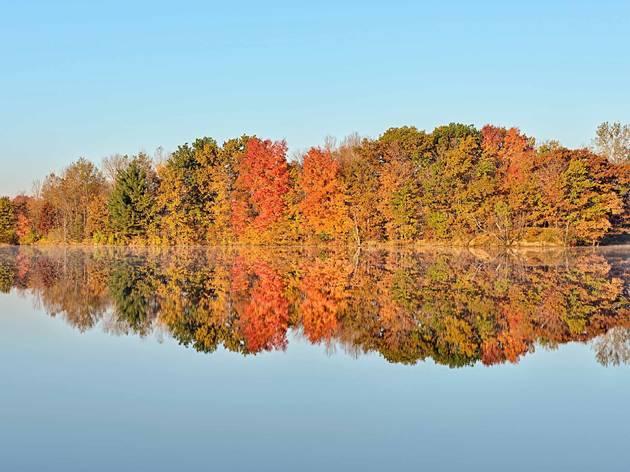 Lake Beaverton Michigan