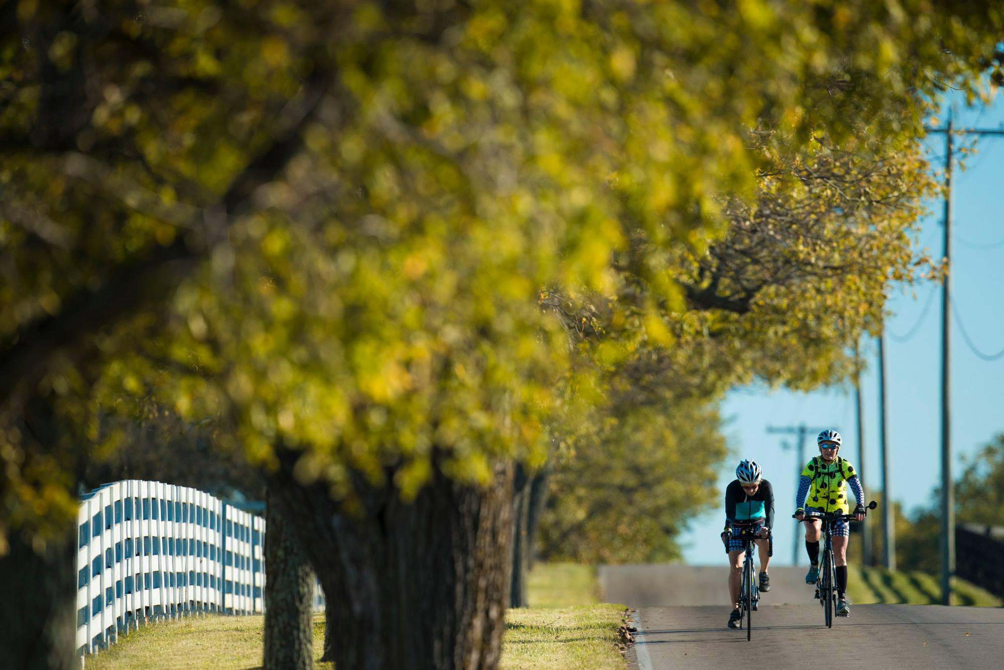 Lexington kentucky biking