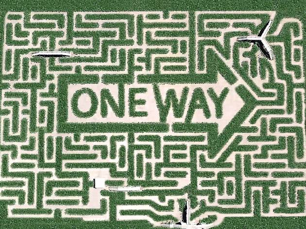 Wander through the coolest corn mazes in the USA
