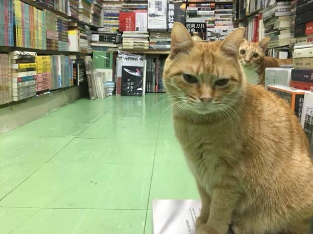Sam Kee Book Co