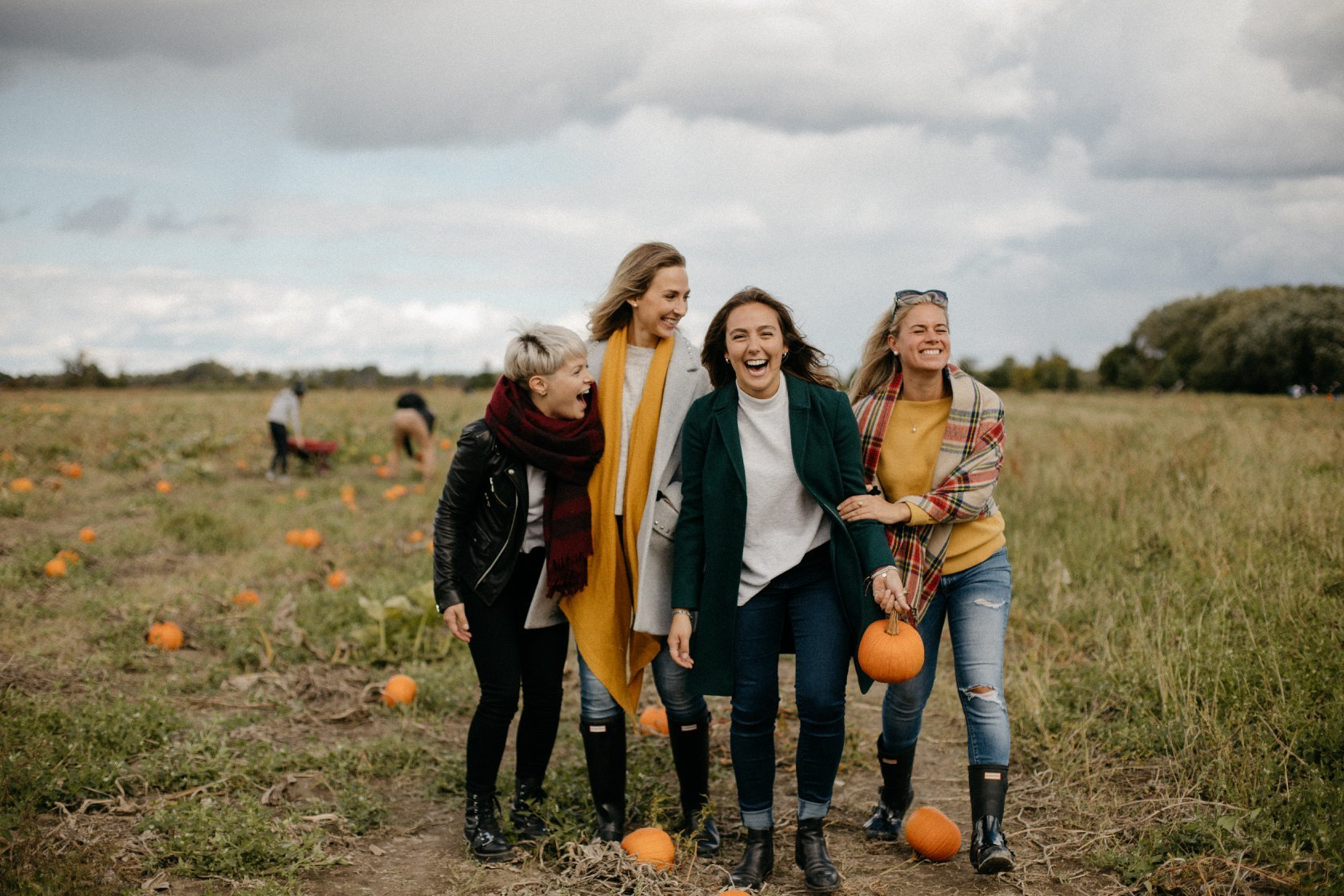 The best pumpkin patches to go pumpkin picking near Montreal