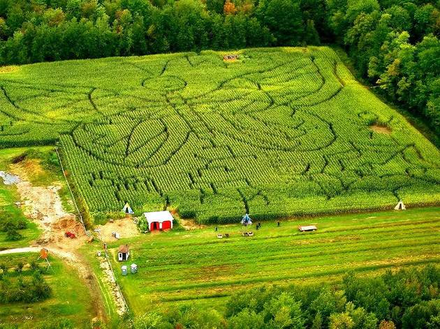 Get lost in the best corn mazes near Montreal