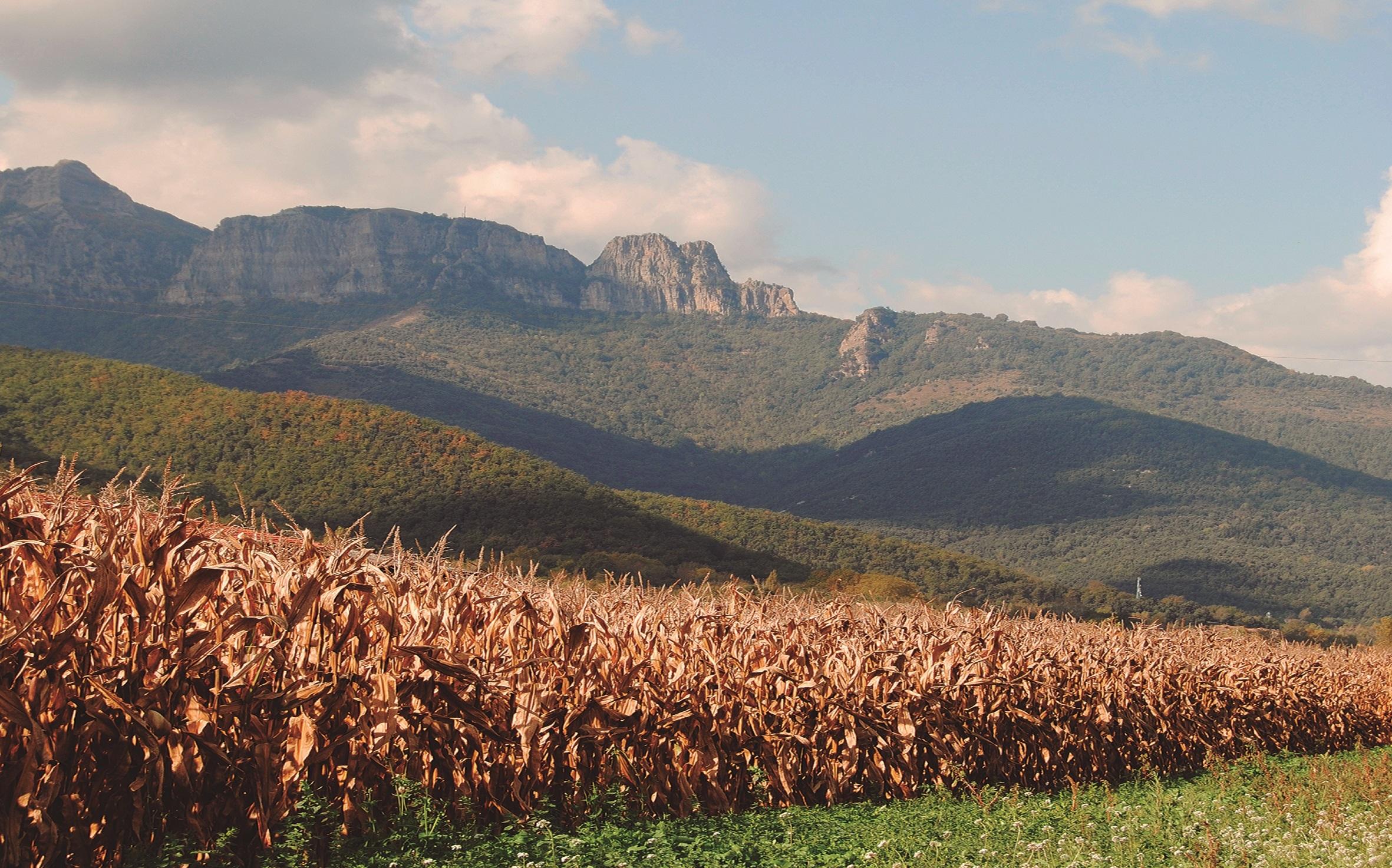 Cornella de Terri, ruta per Catalunya, tardor 2020