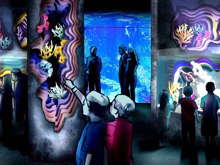 SEA LIFE Aquarium at American Dream