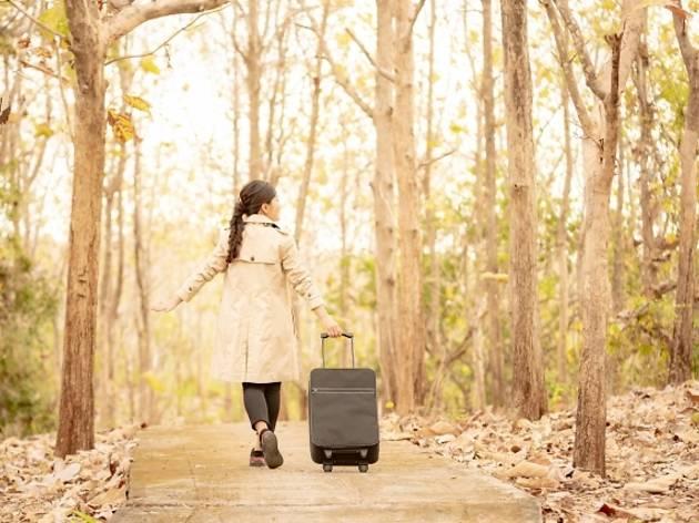 Go To東京追加で家賃より安いホテルステイが登場