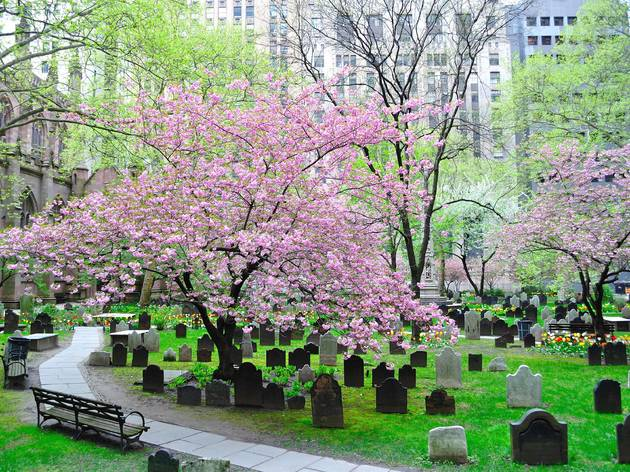 Trinity Church Cemeteries New York