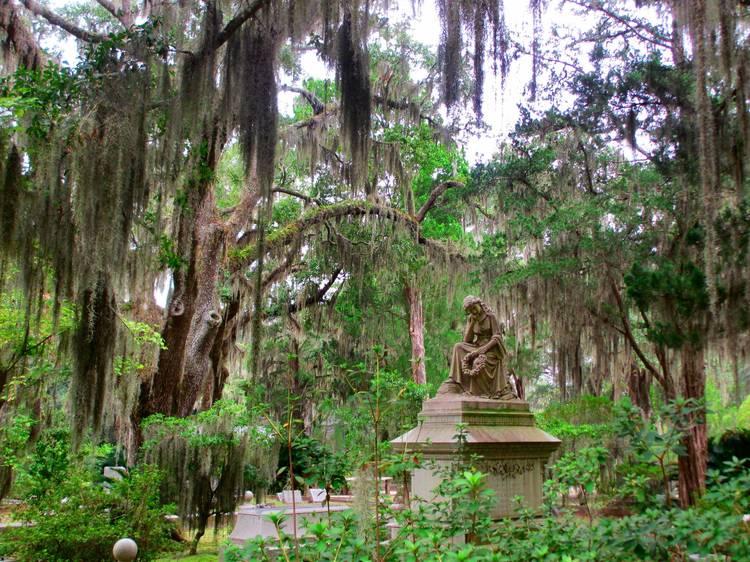 Savannah, GA: Bonaventure Cemetery