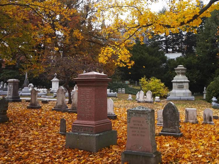 Cambridge, MA: Mount Auburn Cemetery