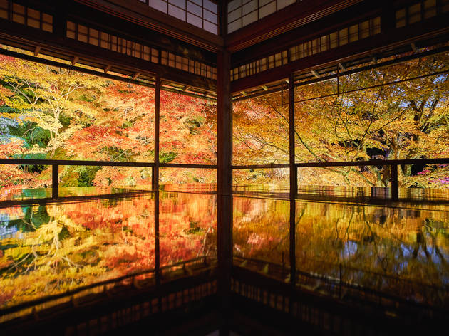 The most beautiful autumn destinations in Japan