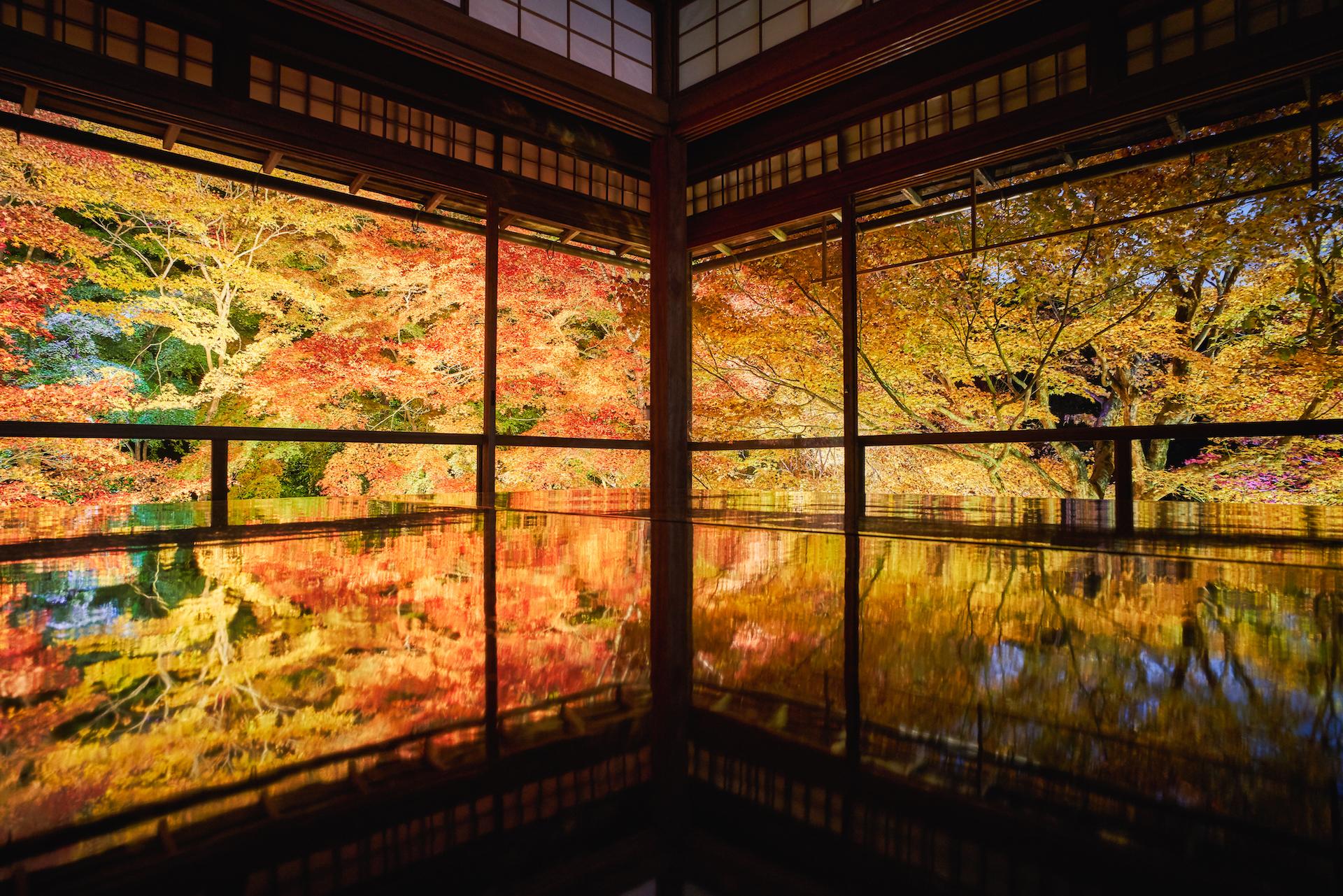 Ruriko-in Temple, Kyoto