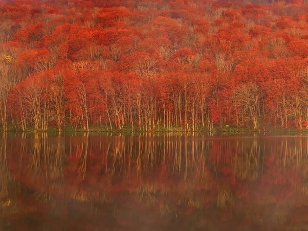 Lake Towada, Aomori