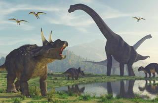 Campamento Dino-Aventura (Foto: Shutterstock)