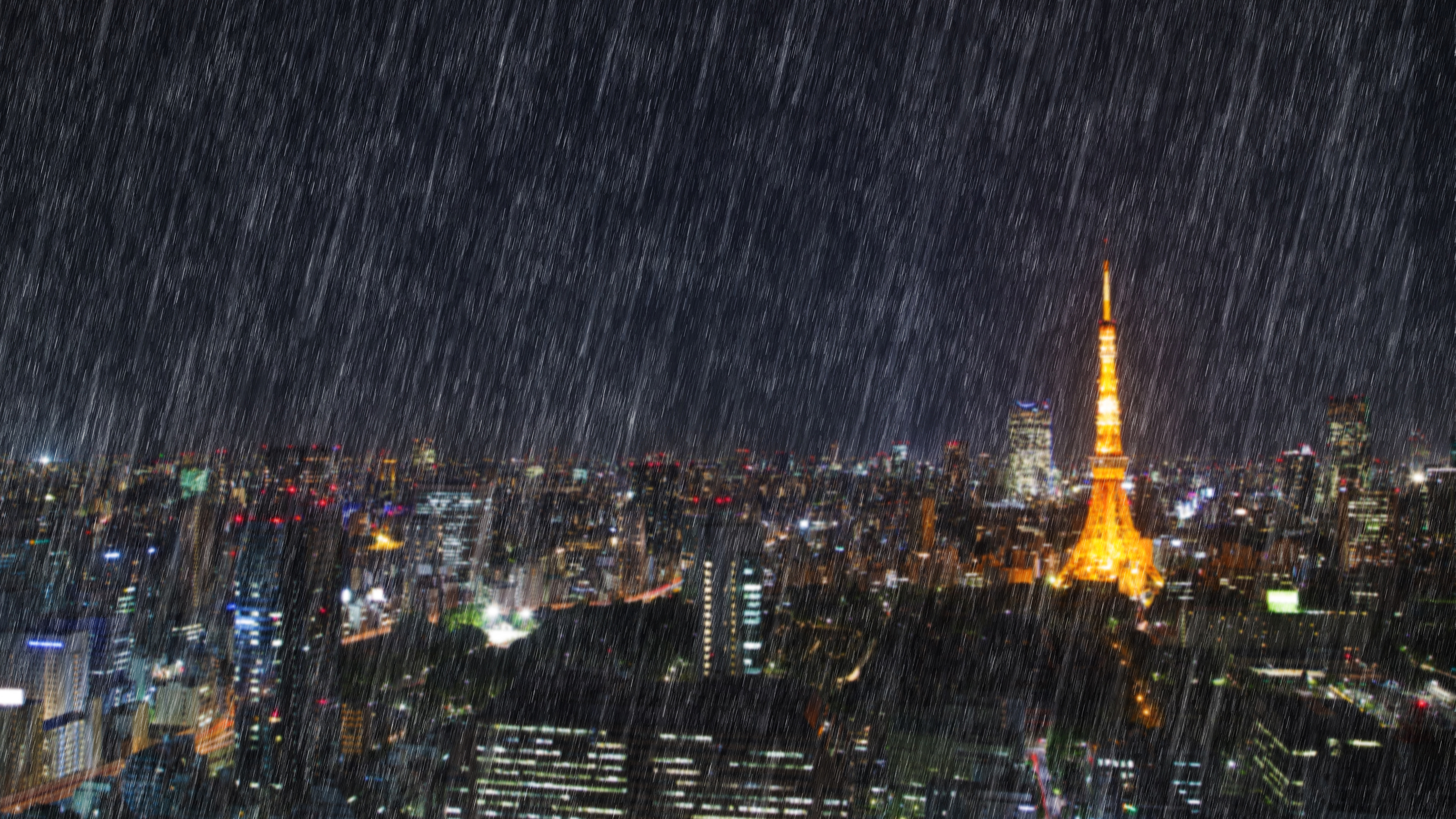 Typhoon in Tokyo: how to prepare and what to do when it hits