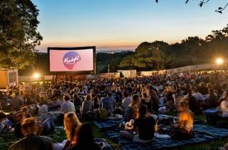 Moonlight Cinema crowds at twilight in Centennial Park
