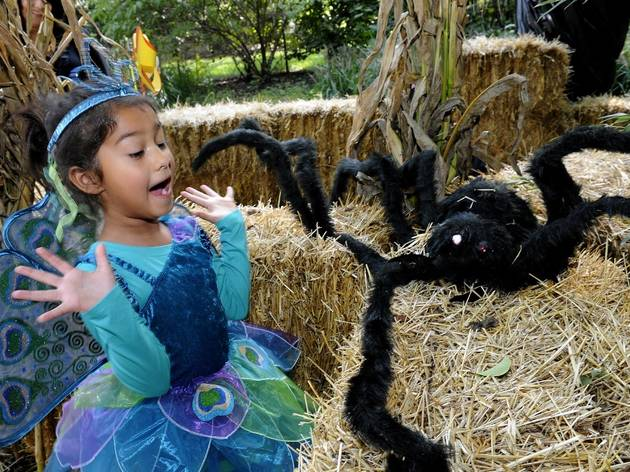 Grab tickets to Boo at the Zoo