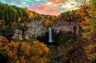 Ithaca, NY