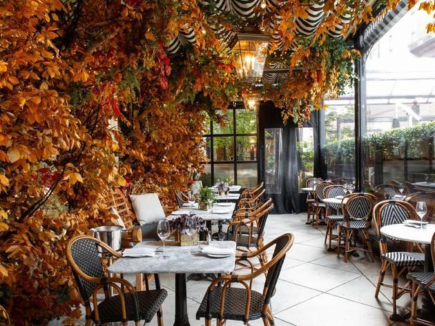 dalloway terrace autumn