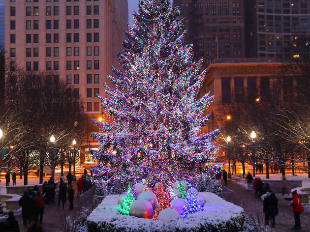 Chicago is searching for the perfect Christmas tree