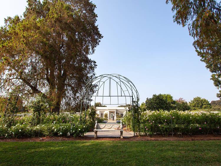 Stroll through a botanical garden together