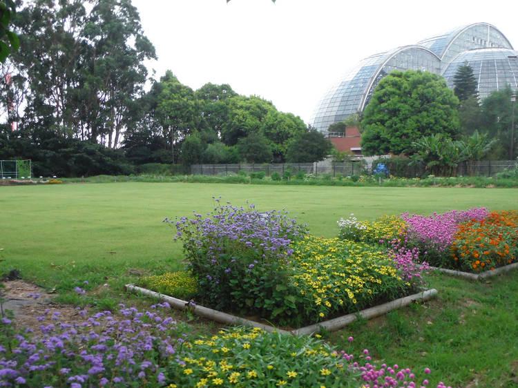 Yumenoshima Park Tropical Greenhouse Dome