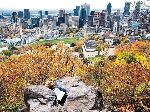 Mont-Royal, Fall/Automne