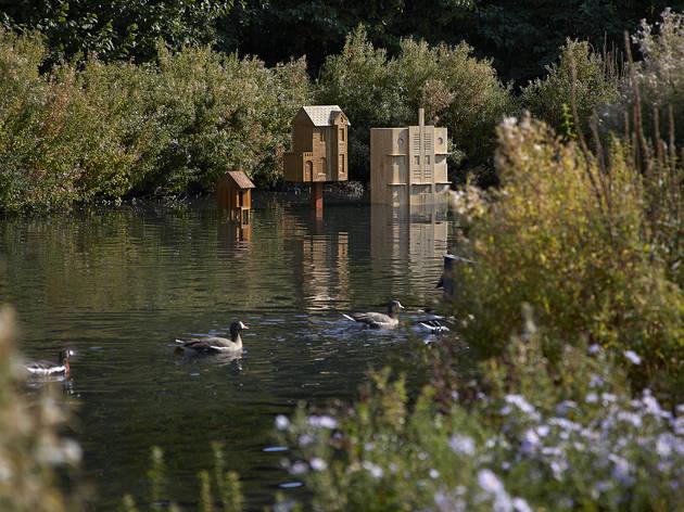Wetlands Unravelled