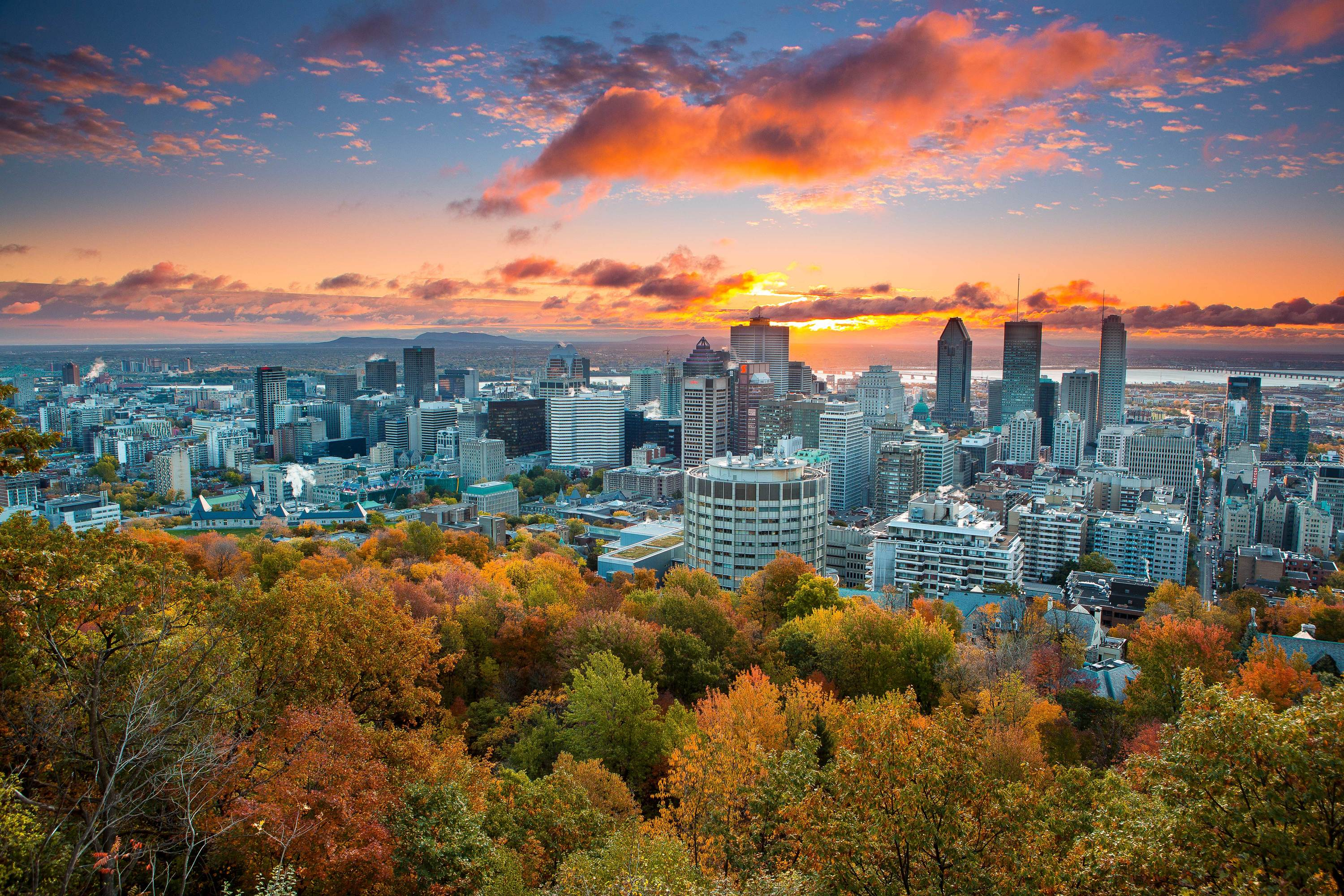 This map tracks which areas of Quebec are hitting a fall foliage peak