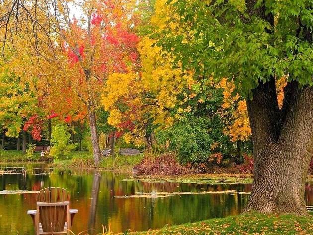 Montreal Bontanical Garden