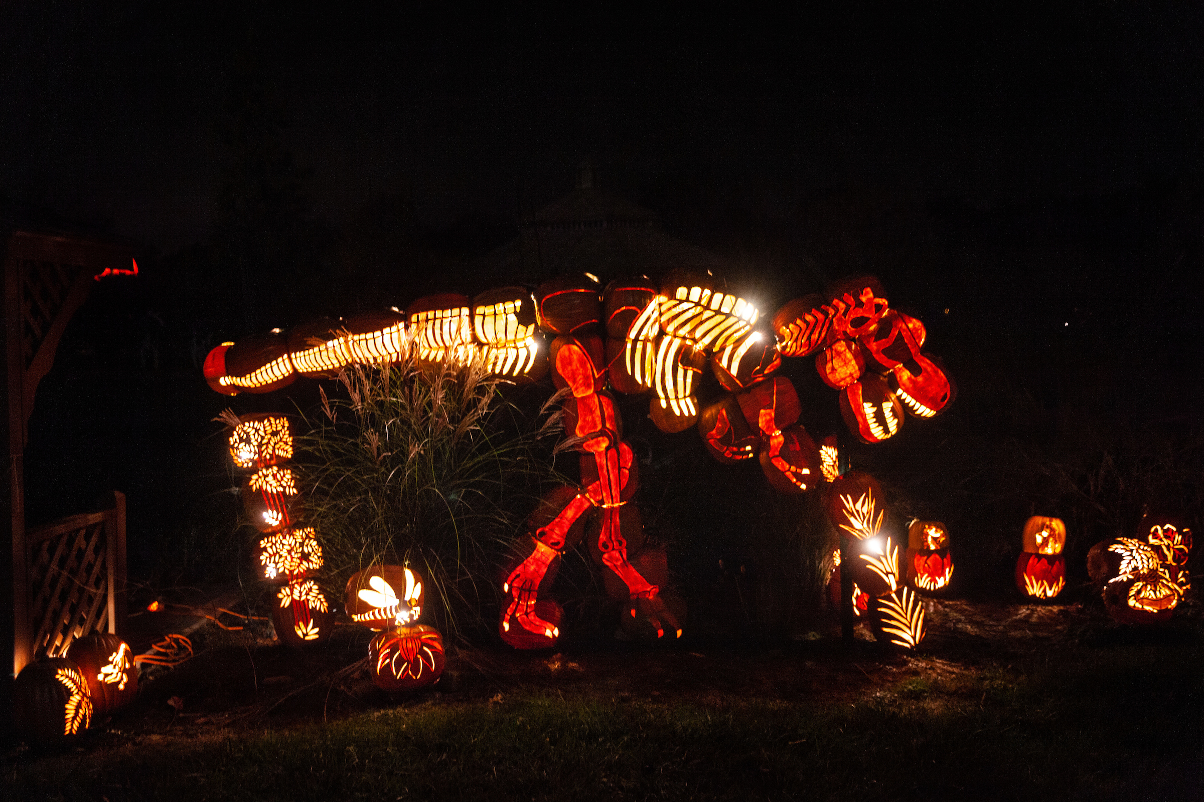 Add the Brite Nites pumpkin display to your fall to-do list