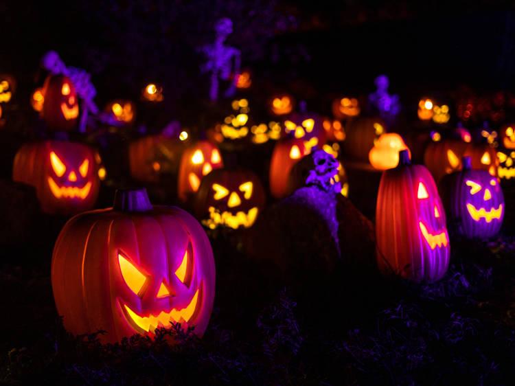 Halloween at Illumi