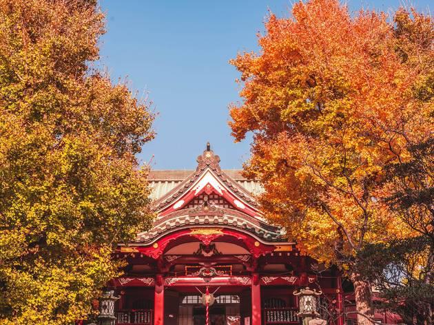 Autumn in Tokyo - stock photo