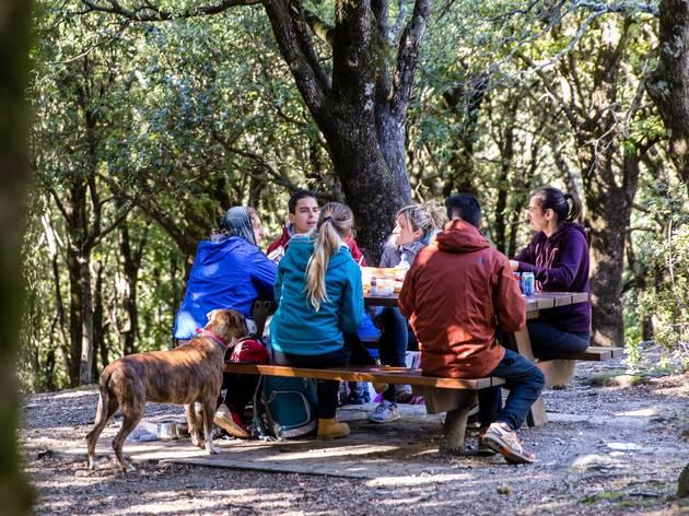 Zona Pícnic