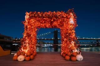 Pier 17 Pumpkin Patch