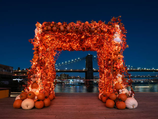 Pier 17 Pumpkin Patch