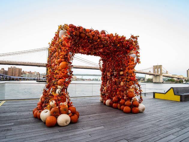 pier 17 pumpkin arch