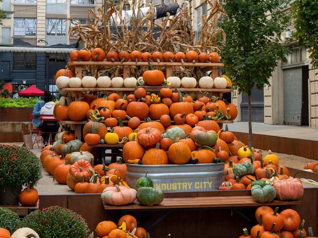 Industry city pumpkins