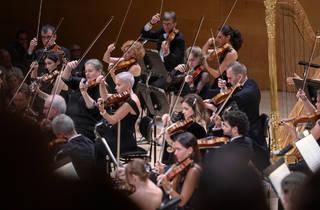 Concert Alemany de Brahms. OBC, Músics de l'OBC durant el concert inaugural