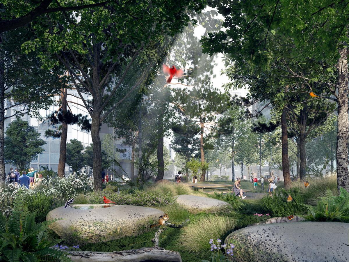 Montreal unveils its design for an urban forest in the middle of its downtown core