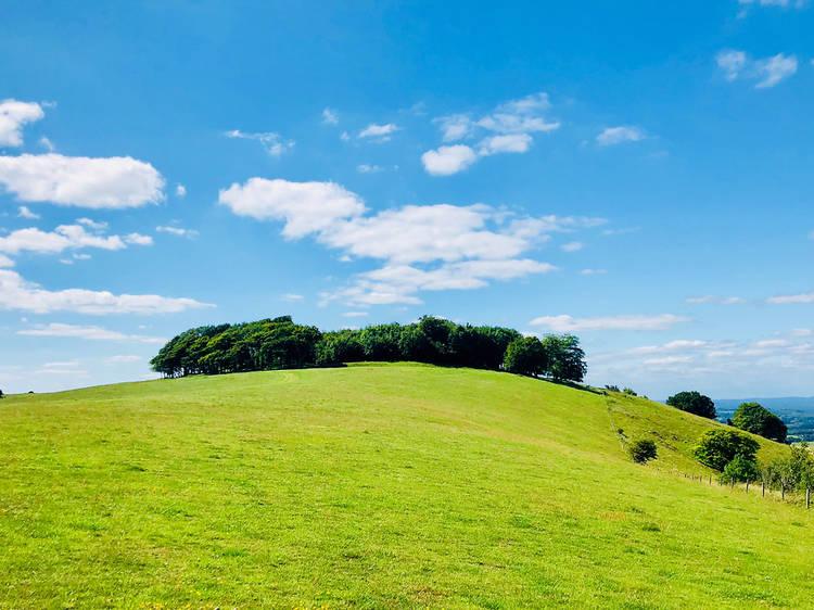 Chanctonbury Ring, West Sussex