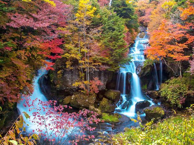 Nikko, Ryuzu Falls, autumn