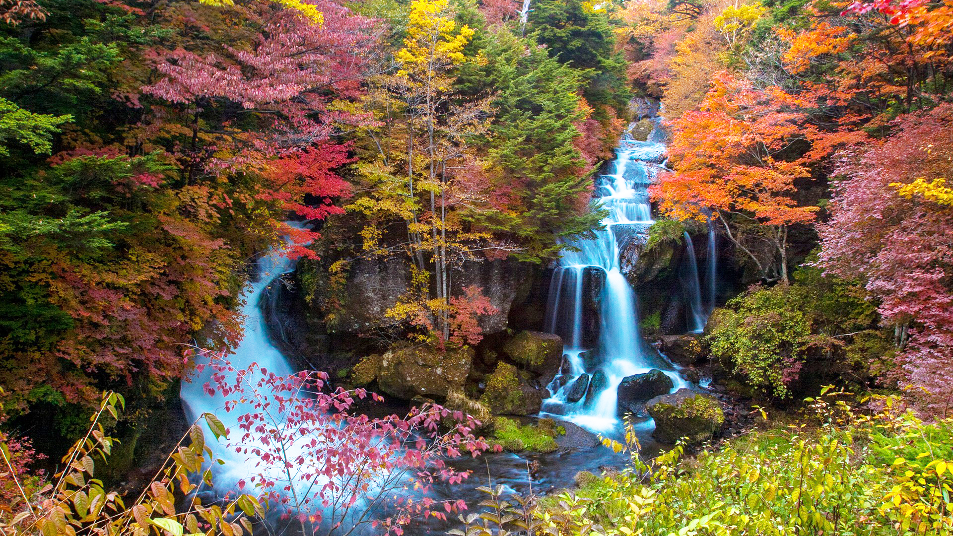 In photos: Northern Japan's autumn foliage has reached its peak colours