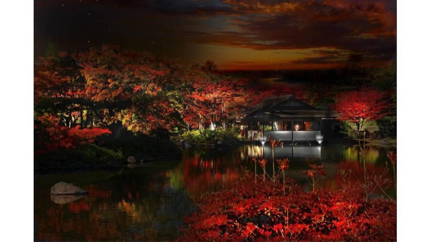 東京、秋の紅葉イベント