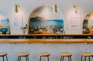 Palmetto bar