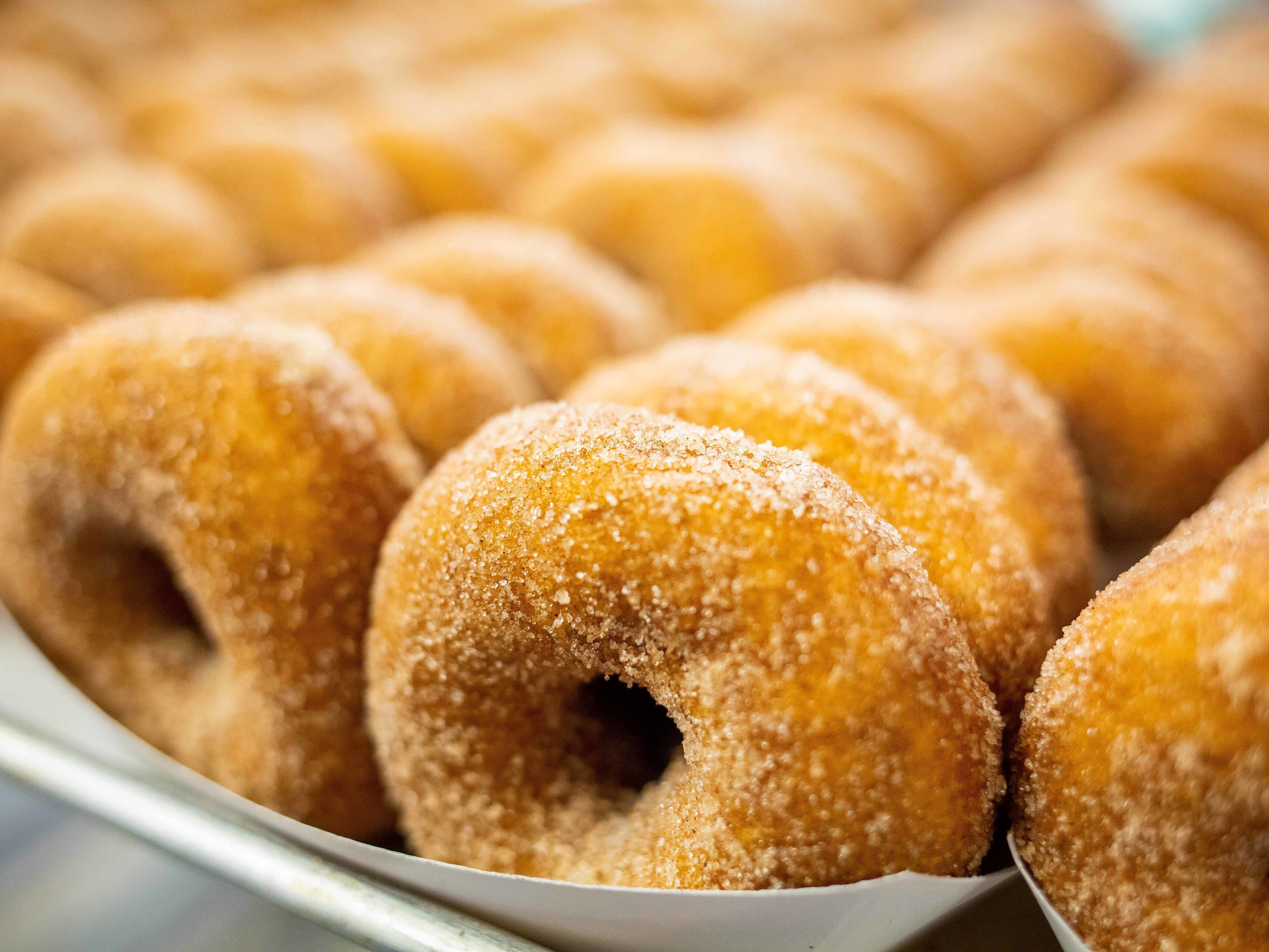 The tastiest apple cider donuts near me in NYC