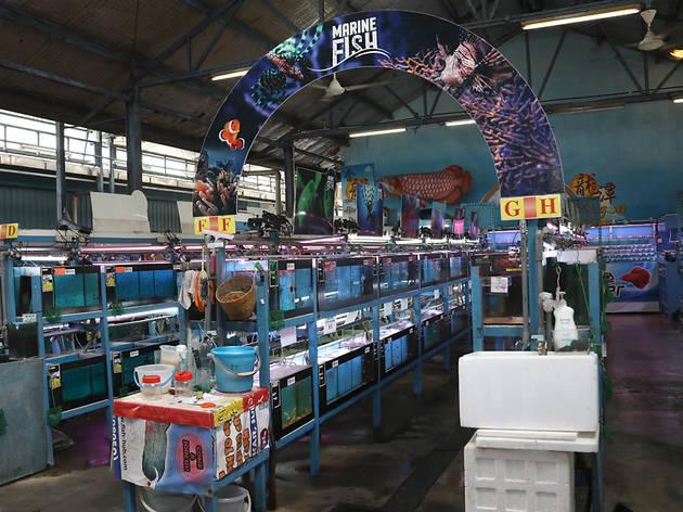 Yi Hu Fish Farm Trading