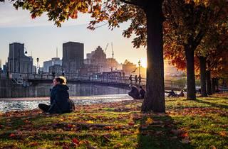 Montreal, Fall