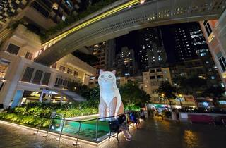 Lee Tung Avenue x spca cat festival