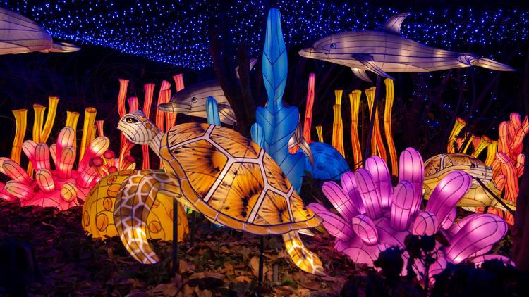 Bronx Zoo Holiday Light Show